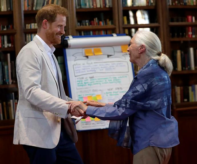 Prince Harry and Dr Jane Goodall performed a monkey dance at the Roots & Shoots Global Leadership Meeting at Windsor Castle.   *Source: Getty*