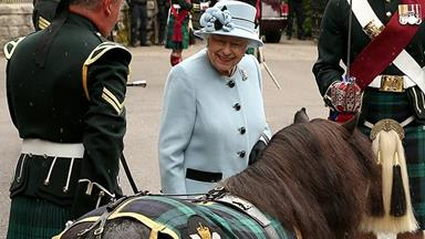 Why everyone's talking about the Queen and a very mischievous pony