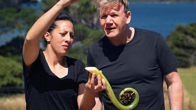 Gordon Ramsay monique fiso unchartered new zealand