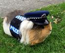 NZ police have posted a touching tribute to Constable Elliott: the world's first police guinea pig