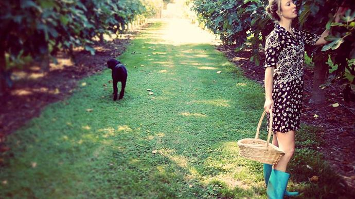 We moved from Auckland to an orchard in Marlborough and haven't looked back!
