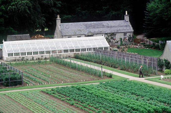 Prince Philip at the Balmoral Estate greenhouse and vegetable gardens. *(Image: Getty)*