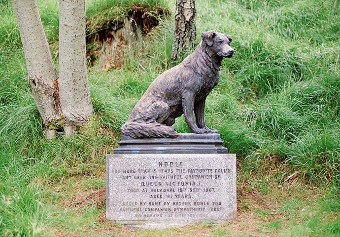 The statue of Queen Victoria's dog Noble, on the Balmoral estate. *(Image: Getty)*