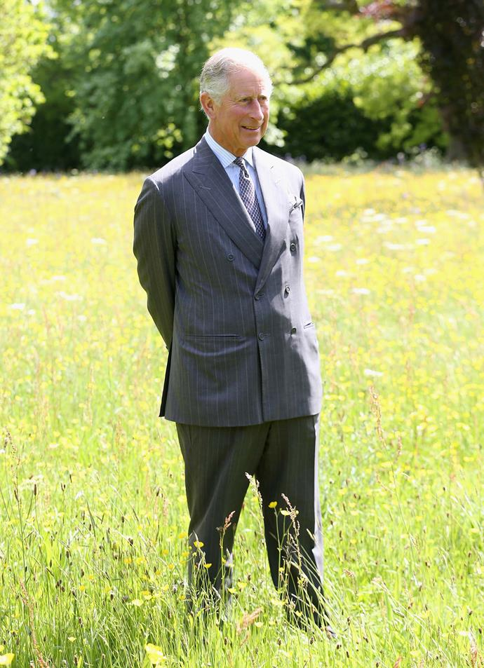 Prince Charles in the Highgrove meadow where many of the nettle plants were collected for the collection. *(Image: Getty)*