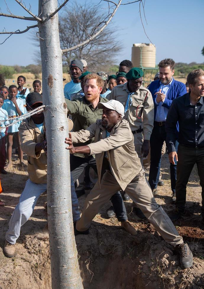 Harry takes part in a tree planting event at Chobe National Park in Kasane, Botswana. *(Image: Getty)*