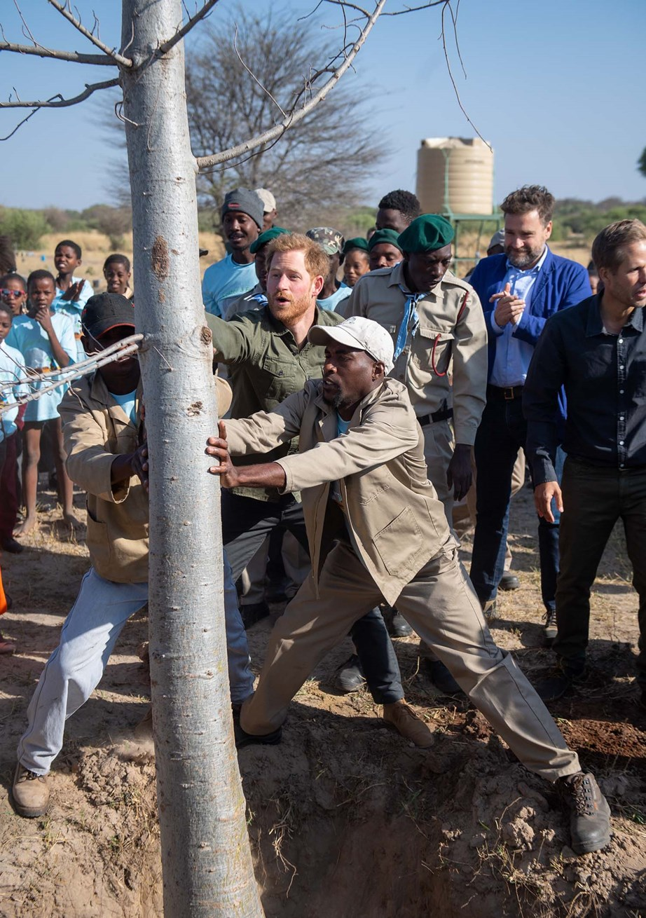 Harry helping to plant a Baobab tree in Botswana - the same kind of tree he photographed for National Geographic. *(Image: Getty)*