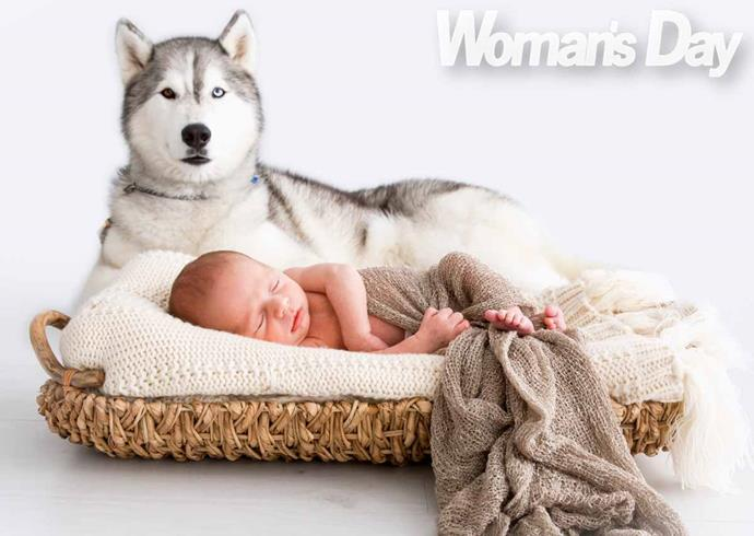 A guard dog and a guardian angel: Ada watching over VIcki's then-two-week-old son Zain.