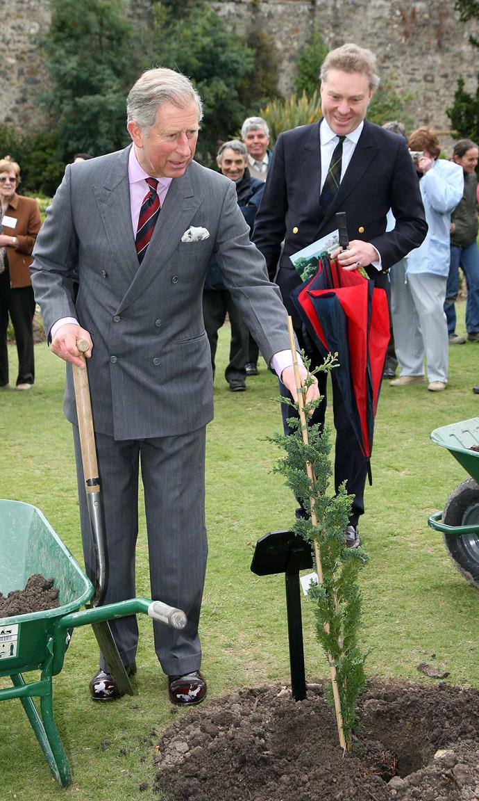 Prince Charles 'shakes leaves' with a tree during a tree planting ceremony in Wales. *(Image: Getty)*