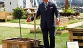 Prince Charles shakes hands with trees after he plants them to 'wish them well'