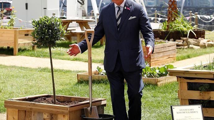 prince charles planting a tree