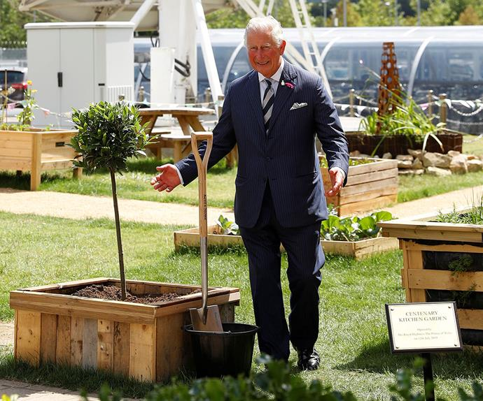 prince charles planting a tree