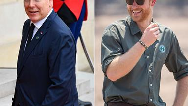 Prince Harry receives support from Prince Albert of Monaco: 'Do what you have to do to ensure your privacy'