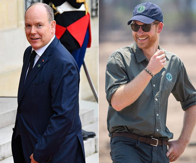prince albert of monaco and prince harry