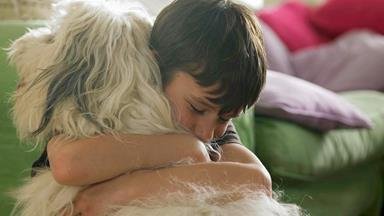 Pet quirks and personalities: Finding the right pet for you and your family