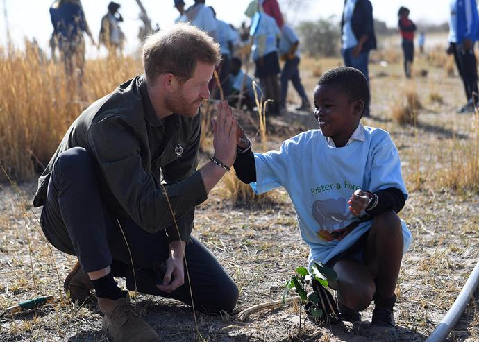 Prince Harry plants trees with schoolchildren in Botswana during his recent official visit. *(Image: Getty)*