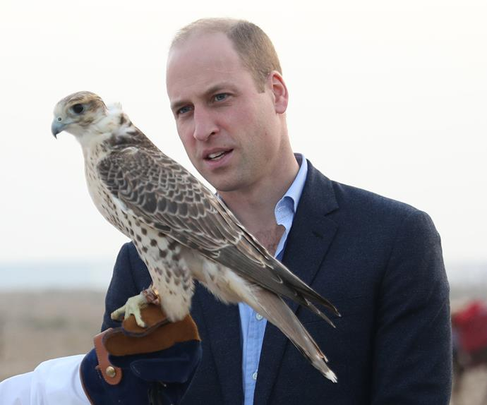 prince william kuwait