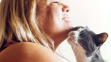 Study finds cats have had a bad rap - they actually care about us quite a lot