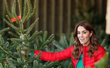Duchess Catherine shares her family's secret for picking the best Christmas tree
