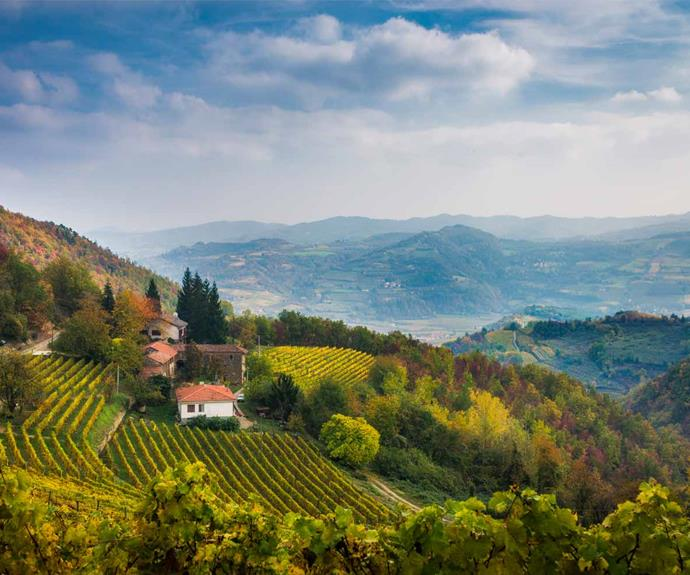 I'm living my own chick flick movie: The Kiwi divorcee who bought a house in a tiny Italian village