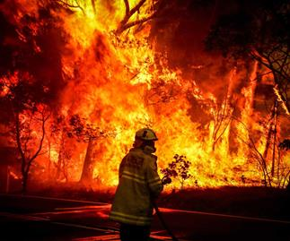 Facing the fiery inferno: Kiwi family's frightening Aussie bushfire ordeal