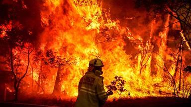 Facing the fiery inferno: Kiwi family's frightening Aussie bushfire ordeal