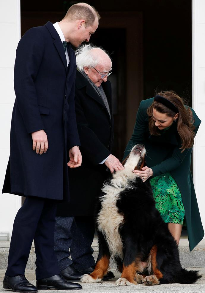 The Cambridge's met President Michael D. Higgins' adorable dog on their first day in Ireland. *(Image: Getty)*