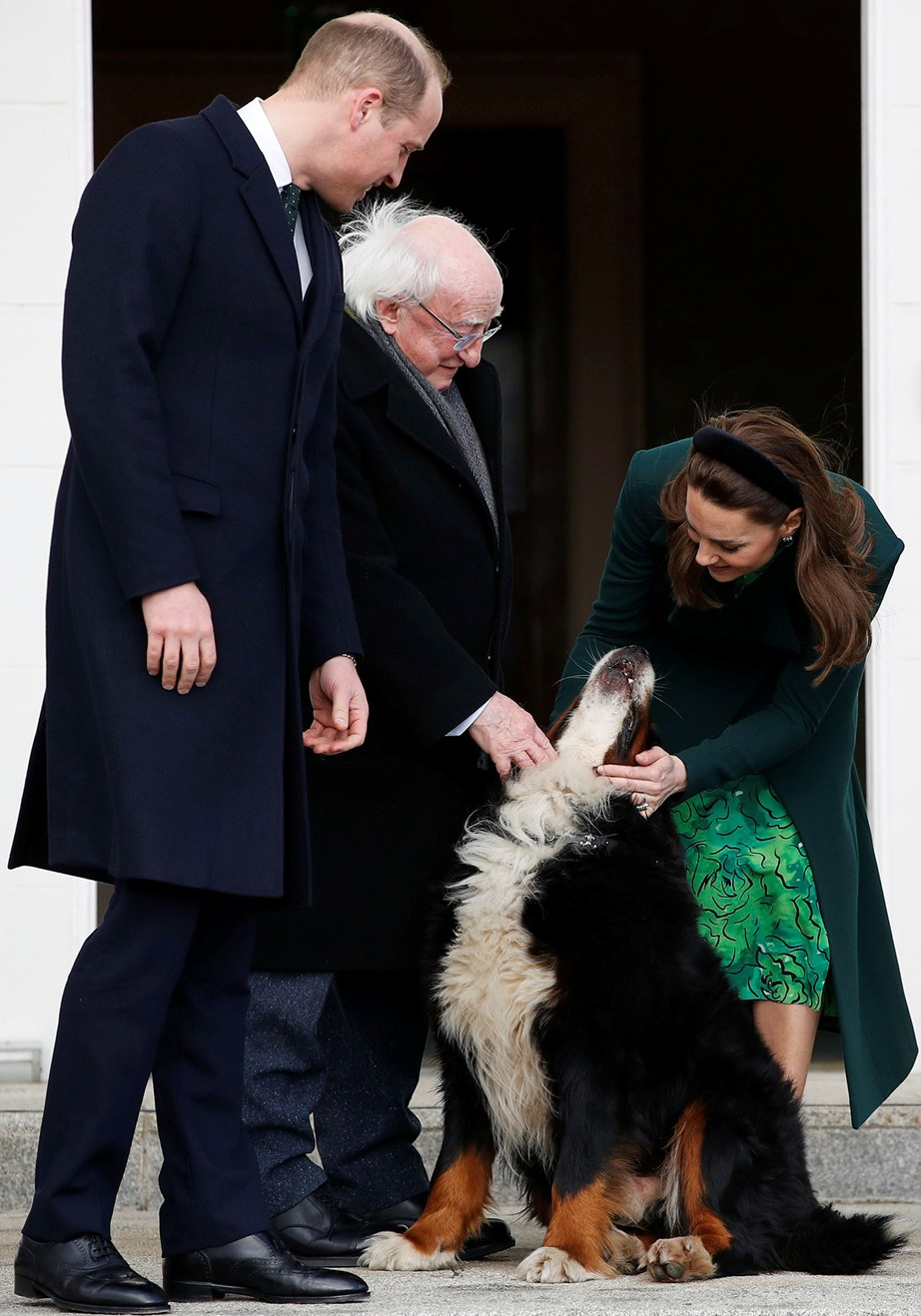 William and Catherine met the President's dog on their first day in Ireland. *(Image: Getty)*