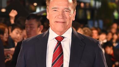 Arnold Schwarzenegger posts a coronavirus PSA featuring his miniature pony and donkey