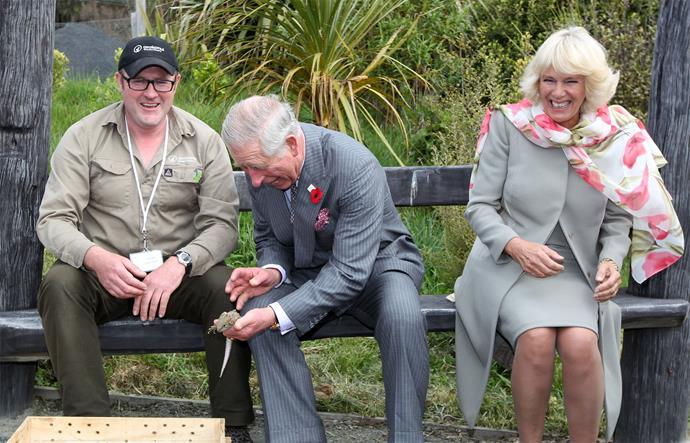 Charles and Camilla enjoy a candid moment with a tuatara during their visit to Orokunui Ecosanctuary. Photo: Getty