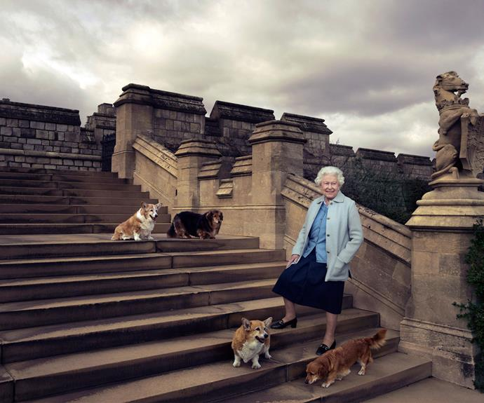 Queen Elizabeth II is pictured with several of her beloved dogs in the private grounds of Windsor Castle. Photo: Annie Leibovitz