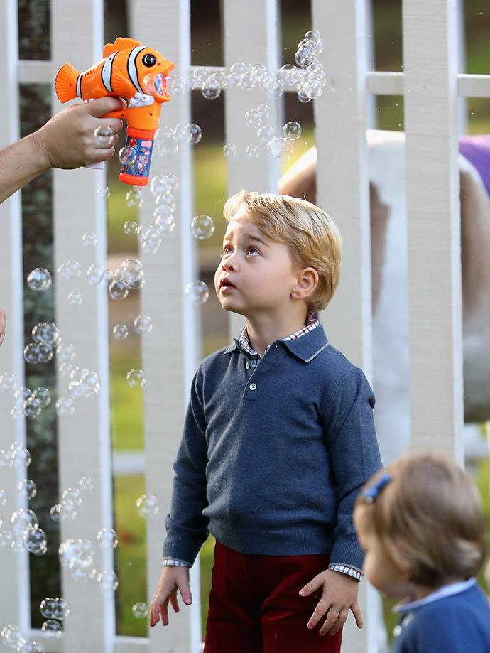 It looks like Prince George found Nemo!