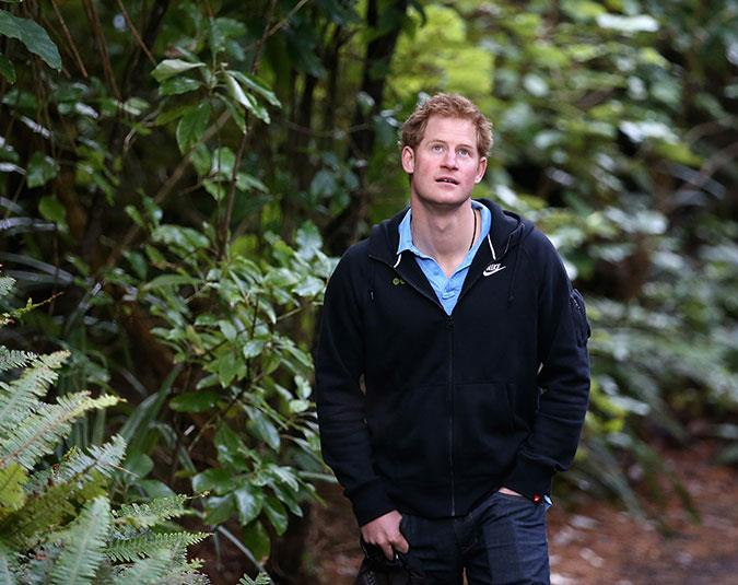 Prince Harry admires Ulva Island, a wildlife sanctuary off the coast of Stewart Island.