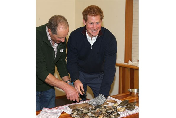 Harry tries his hand at shucking Bluff oysters on Stewart Island.