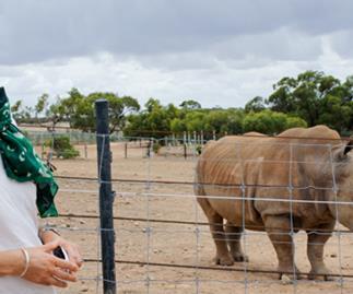 Judy Bailey's Australian outback adventure