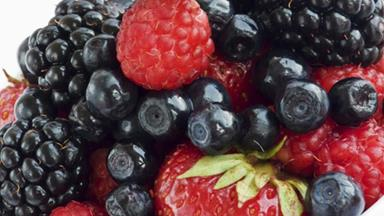 Can eating fruit make vaccines work better?