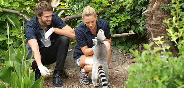 Sia and Jono from Step Dave go to the zoo