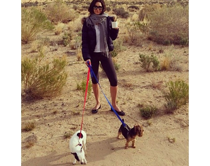 Actress Emmy Rossum enjoys a walk in the desert with her furry friends. Source: Instagram user emmyrossum.