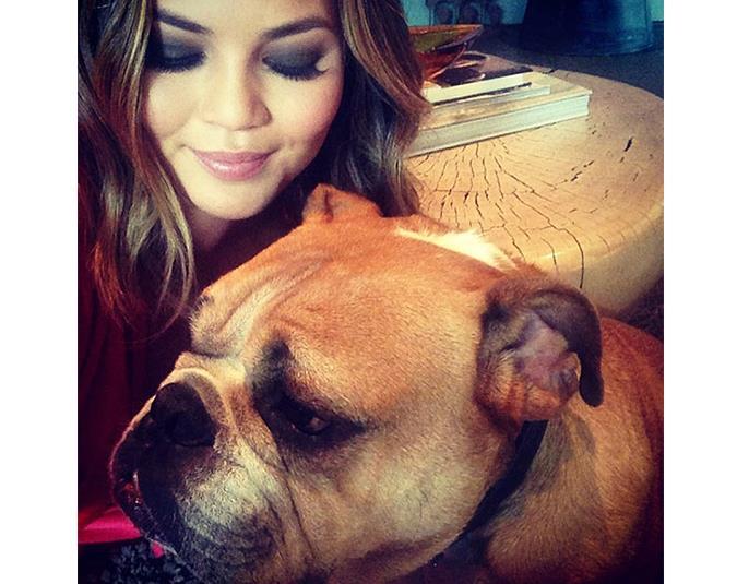 Model Chrissy Teigen shares a photo of her precious pooch. Source: Instagram user chrissyteigen.