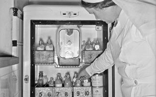 A nurse reaches inside a fridge for bottles of infant formula at the Karitane Hospital, Christchurch, 1943.