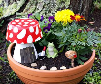 Fairy garden pot.