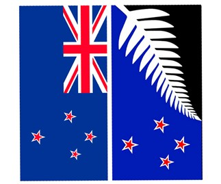 Is the flag referendum worth it?