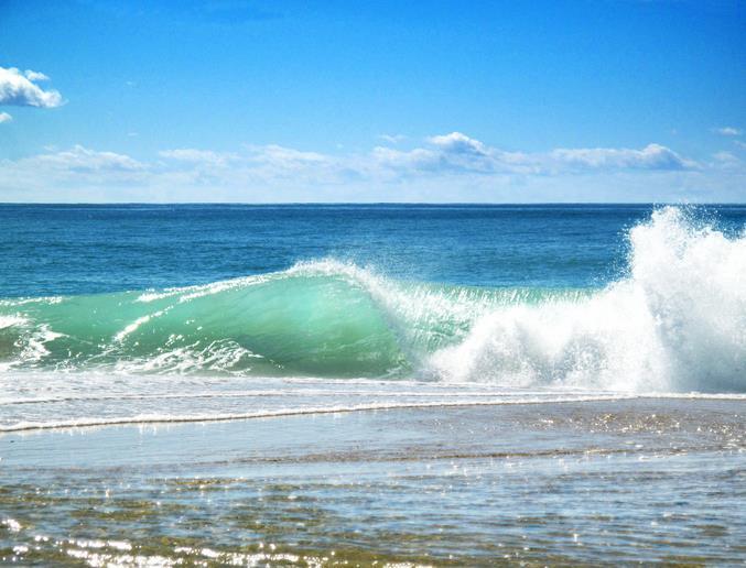 World Ocean Day 2016
