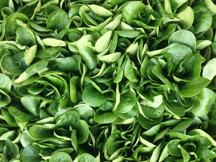 Spinach is a healthy and versatile ingredient