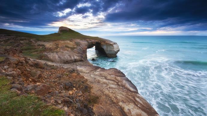 Ten reasons to visit Dunedin