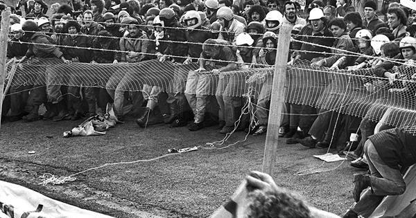 1981 The Year New Zealand Roared