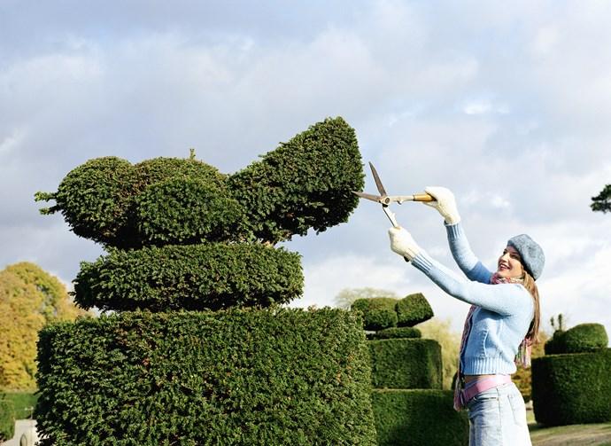 How to make a formal garden