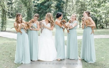 Is this the next big wedding trend?