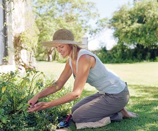 Easy garden upkeep tips
