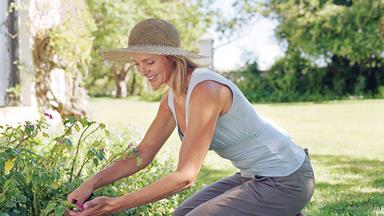 Easy garden upkeep tips