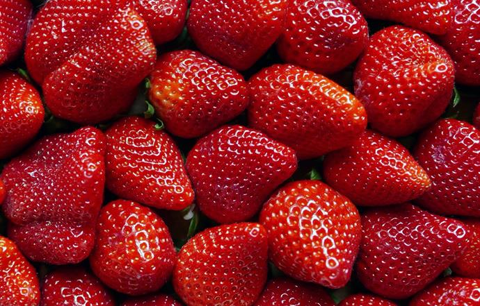 Picking fresh strawberries – and them eating them on the car ride home.